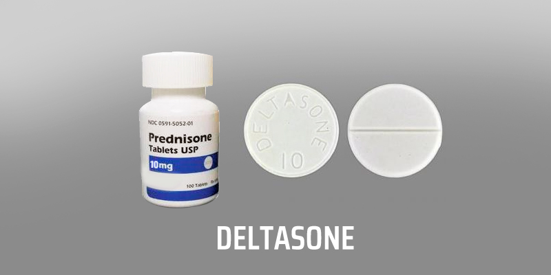 Prednisone no prescription